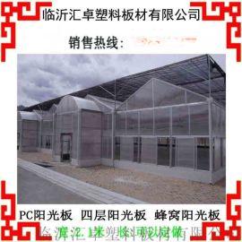 潍坊阳光板温室大棚-阳光板雨棚-阳光板车棚