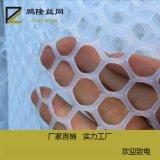鹏隆 塑料平网 水产养殖网 家禽养殖网 源头厂家