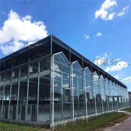 金德鑫温室 承建玻璃大棚规格 智能玻璃温室用途