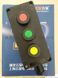 ZXF8030-B3防爆主令按钮盒