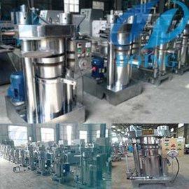 立式液压榨油机 液压榨油机 液压榨油机厂家 小型液压榨油机 榨油机
