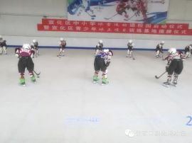 出租出售人造仿真滑冰板可移动滑冰板900平米真实场地
