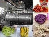 大型果蔬类农产品深加工设备-劲森真空低温油浴脱水干燥机