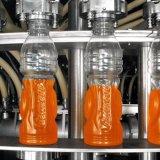 厂家直销全自动变频饮料机械