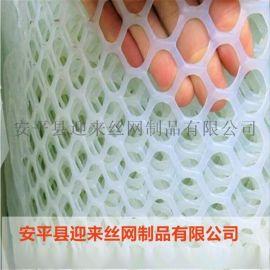 白色养殖网,绿色塑料网,现货塑料网