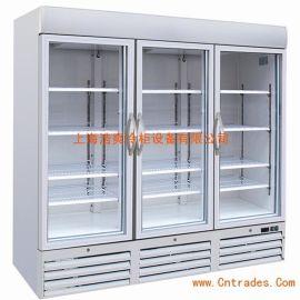 FIRSCOOL佛斯科六门冰箱 冷冻商用冰箱 酒店设备冰箱 外销欧美