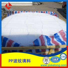 250Y塑料规整波纹填料PP材质孔板波纹填料