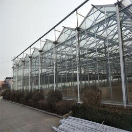 小型外遮阳玻璃温室 育苗玻璃大棚 智能玻璃温室大棚