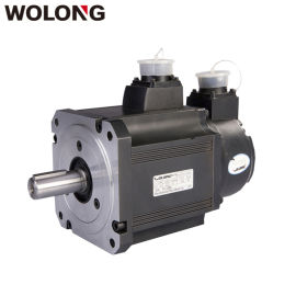 WOLONG/臥龍 GAM GAS臥龍伺服電機直銷
