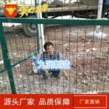 框架护栏网 防护网 铁丝网围栏 小区围栏网