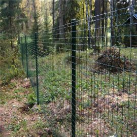 农林防护双边护栏网 果园农场围栏网铁丝网厂家