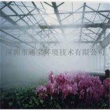 花卉苗圃 蔬菜大棚冷雾降温-雾化加湿机