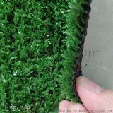 人造草坪 模擬塑料草皮 工程圍擋人工假草皮