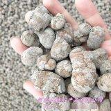 本格陶粒 园林绿化陶粒 园艺陶粒 无土栽培陶粒