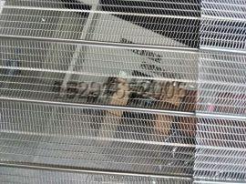 有筋扩张网实体工厂A轻钢别墅实心墙体  灌浆网模
