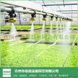 小型智慧溫室項目-青州德源-無土栽培智慧溫室