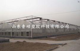 濟南陽光板溫室 陽光板