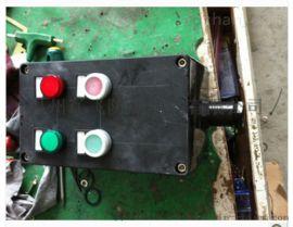 BZC8050-A2D2K1防爆按钮开关盒
