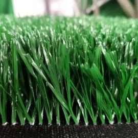 休闲草坪 运动草坪 幼儿园草坪 草皮地毯