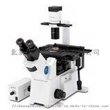 奧林巴斯研究級倒置顯微鏡IX51/IX53
