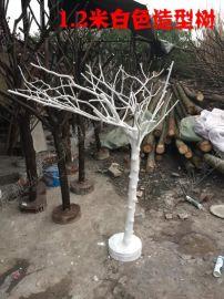 成都干树 婚庆白色树 造型树杈 白色干树 造型白色树 生产批发