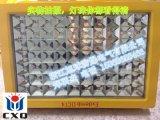 方形led防爆泛光燈, 蘇州100wled防爆投光燈