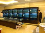 定做海鮮池,海鮮池公司制作海鮮池價格,海鮮池設計,海鮮池安裝