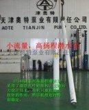 天津溫泉高揚程井用潛水泵