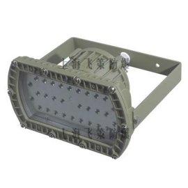 防爆节能灯LEDD