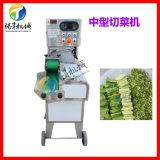 多功能中型切菜机厂家供应 切土豆切青菜