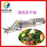 蔬菜气泡清洗机 蔬菜脱水除水风干线