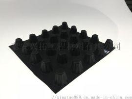山东泰安兴拓排水板销售塑料排水板