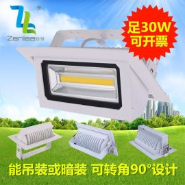 Zenlea珍领 30W方形COB投射灯