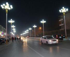 四川景觀路燈,12m大型景觀路燈,景觀路燈