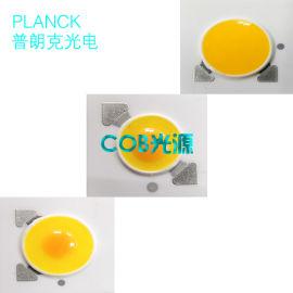 大功率10W 陶瓷COB进口芯片**COB光源