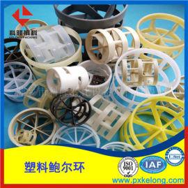 脱 塔塑料鲍尔环填料各种材质聚丙烯鲍尔环大量现货