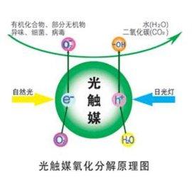 高催化活性锐钛矿纳米二氧化钛 纳米氧化钛光触媒