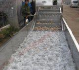 明超苹果气泡清洗机 水果加工机器价格 高压喷淋清洗流水线