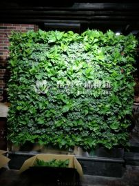 仿真植物牆
