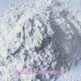 本格轻质活性碳酸钙 超细轻钙 超白轻钙粉 不易分层