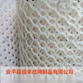 塑料养殖网,现货塑料网,塑料平网