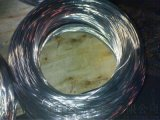 TB304热喷涂不锈钢丝