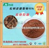 优质松树皮提取物原花青素95%抗氧化抗衰老护肤美容生产批发