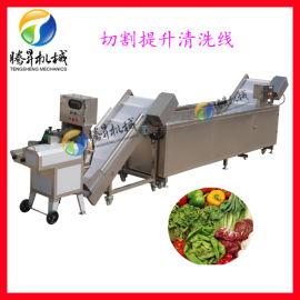 蔬菜清洗线 净菜切割清洗设备