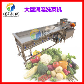 多功能涡流清洗机 蔬菜水果大型清洗设备