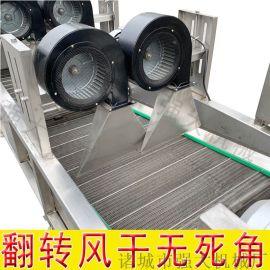 多功能山楂去水风干机【去表面水分】