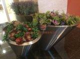 拉丝不锈钢花盆 在堂装饰花盆