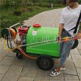 志成手推式汽油喷雾机300升高压农用打药机