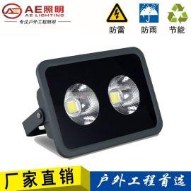 AE照明led泛光灯100W投光灯大功率led广告灯500W400W100W300W投射灯 2芯片100W正白光
