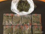 花果茶包装机速溶普洱茶茶叶包装机玫瑰干花蕾自动茶叶包装机